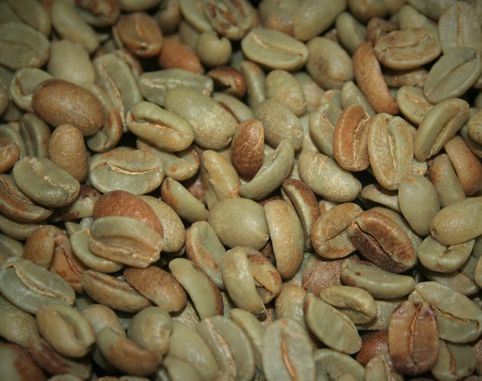 honey process coffee beans