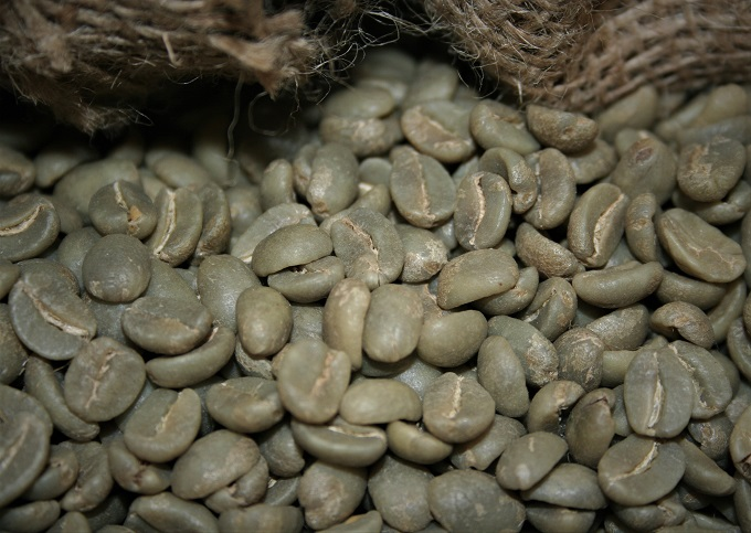 washed process coffee beans